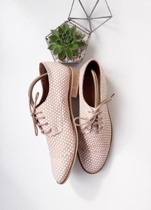 Пудровые кожаные туфли броги на шнурках в горох