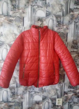 Курточка теплая синтепон 200