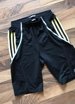 Мужские шорты adidas для спорта