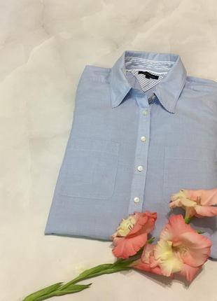 Хлопковая удлиненная  рубашка tommy hilfiger оригинал