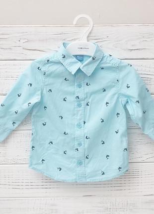 Детская рубашка с китами для ребенка1годик