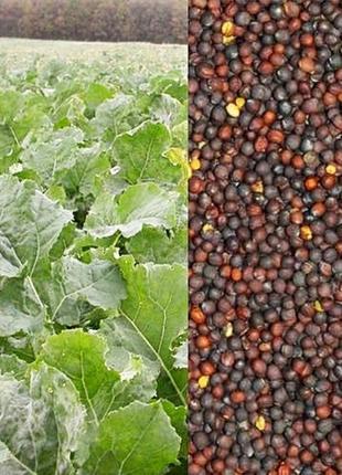 Семена Перко корм для улиток