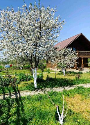 Аренда дом коттедж в Вилково, на Дунае,жилье посуточно,рыбалка
