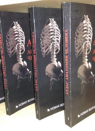 Лас анатомии человека. в 4х томах Синельников Р.Д