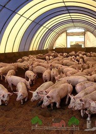 Ферментационная подстилка НеттоПласт Акция 380 гр ! Пробиотики