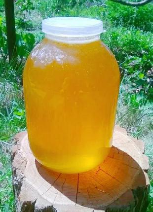 Продам майский и цветочный мед
