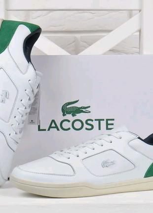 Стильні чоловічі шкіряні кросівки Lacoste