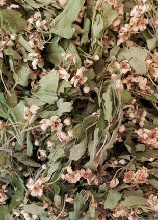 Боярышник цвет 50грамм (Свежий урожай)
