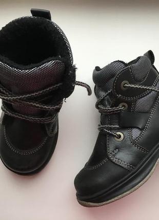 Кожаные ботинки на утеплителе размер 23 стелька 14см
