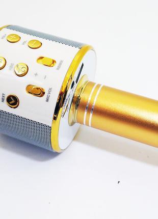 Караоке Wester WS-858 Беспроводной стерео микрофон с динамиком