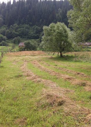 Участок земли в Карпатах с. Микуличин