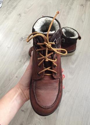 Зимние ботинки ecco 34