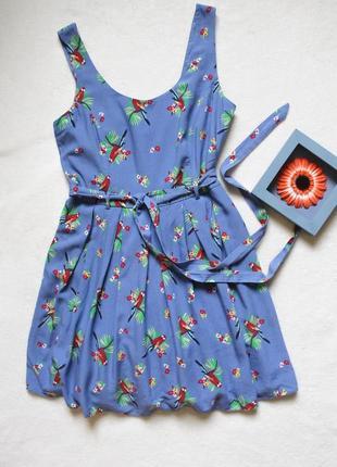 Платье попугайчики,  размер м