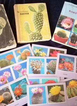 Книги о кактусах
