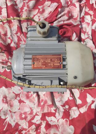 Двигатель асинхронный 250 Вт
