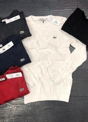 Мужской свитер lacoste в 5-ти цветах! классика стиля от лакост!