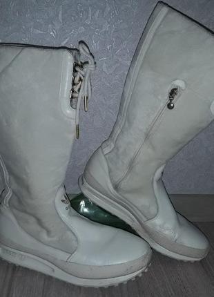 Демисезонные сапоги adidas