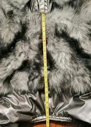 Куртка для Йорка