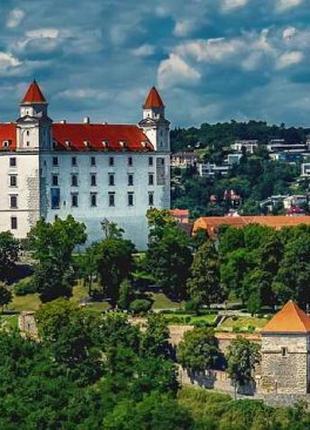 Водители службы такси Bolt, Uber в Словакию