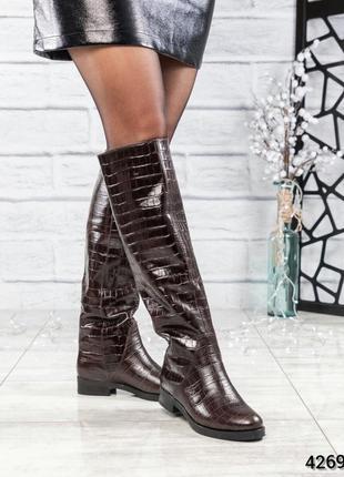 ❤ женские коричневые высокие весенние деми кожаные сапоги полу...