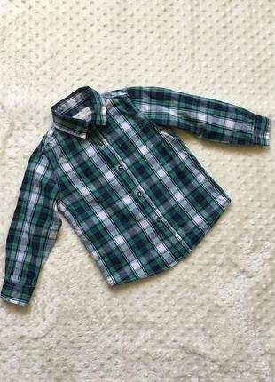 Рубашка, рубашка zara, рубашка в садик