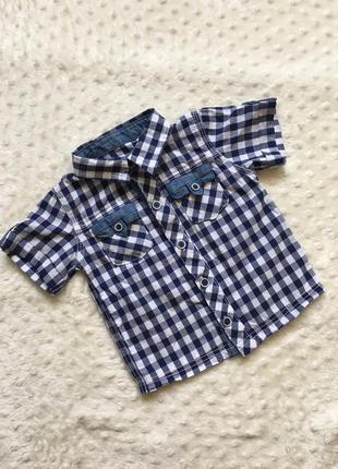 Рубашка, рубашка с коротким рукавом, рубашка в клетку, рубашка...