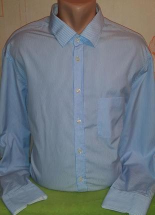 # розвантажуюсь белая рубашка в голубую полоску van laack natu...