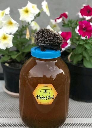 Майский Мёд 2021