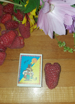 Продам саженцы сладкой очень крупной малины Феномен