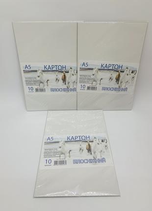 Картон белый Офорт А5/10л.
