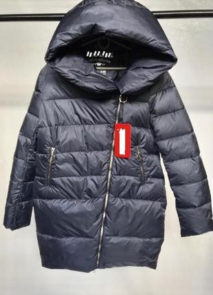 Пуховик (биопух) очень легкая и теплая. бренд украинский!