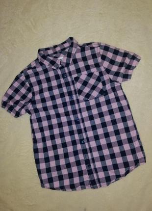 Тенниска рубашка с коротким рукавом