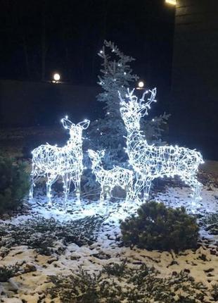 Сказочная семья оленей освещенная светодиодной (LED) гирляндой.