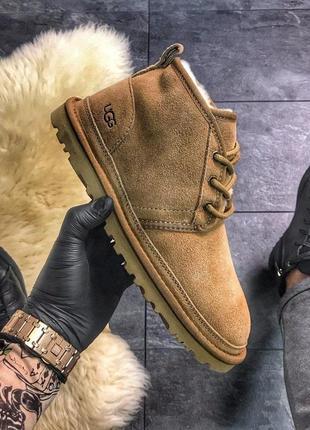 Мужские стильные зимние угги-ботинки с мехом💥ugg man classic s...
