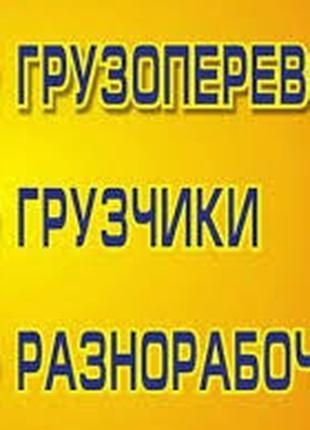 Ищем работу грузчиками, разнорабочими