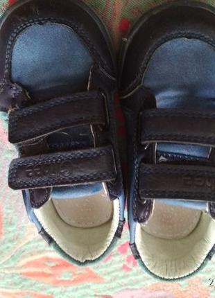Продам детские кроссовки clibbe 21 размер