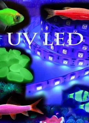 Ультрафиолетовая подсветка в аквариум водонепроницаемая GloFish®