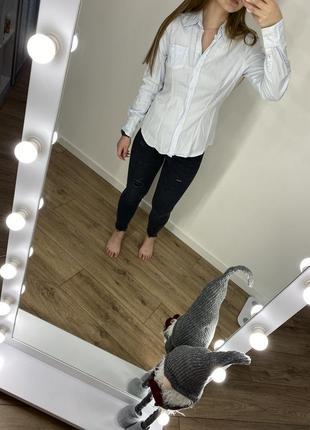 Женская рубашка нежно-голубого цвета mexx