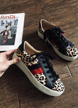 Очень стильные леопардовые  кроссовки/кеды с натуральной шерсти