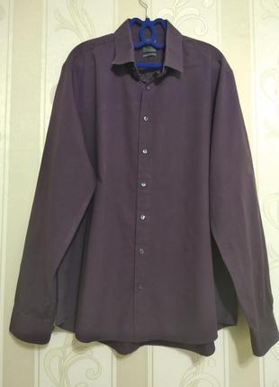 Фирменная мужская рубашка, calvin klein