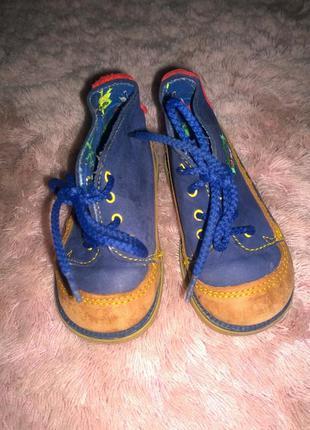 Кожаные ботинки c&a размер 22 по стельке 14 см(италия)