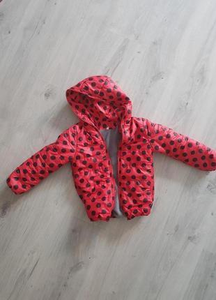Куртка весна на девочку