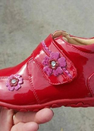 Ботинки scarlett  весна