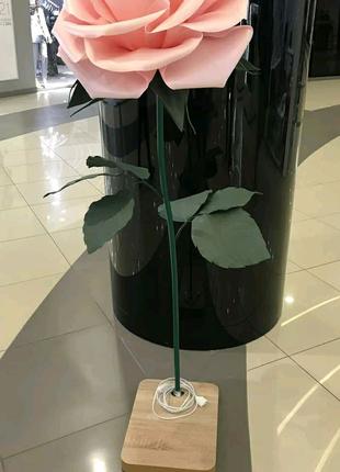 Роза рожева на стійці торшері