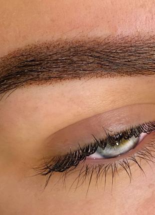 Перманентный макияж, пудровые брови, акварельные губы,межресничка