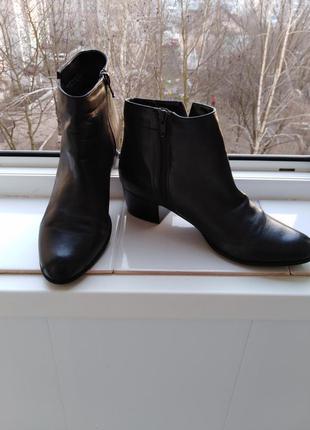 Кожаные   утепленные   ботинки roberto santi.